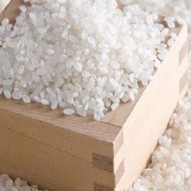 Mua Gạo Tấm Giá Rẻ Ở TPHCM